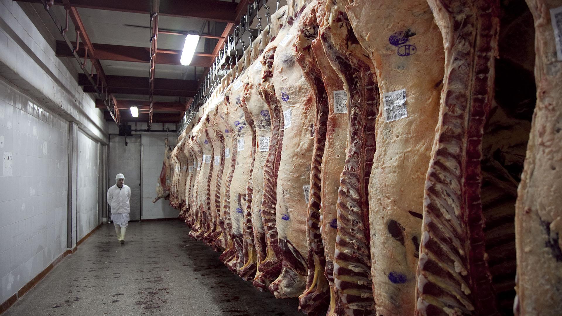 El Gobierno prometió que flexibilizará las exportaciones de carne en forma progresiva