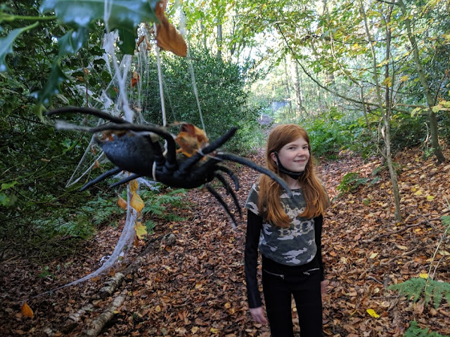 What's On for Kids & Teens this Weekend (October 2021)