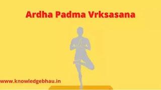 Ardha Padma Vrksasana Benefits and Precautions