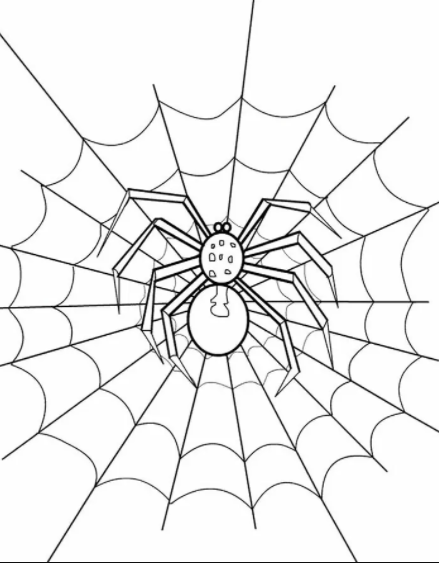 Spider And Web Coloring Pages