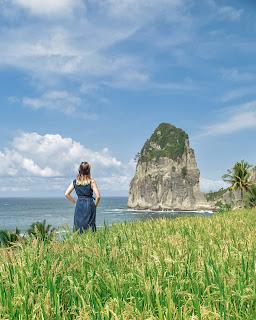 Wisata Pantai dan Sawah di Pantai Pangasan Pacitan Malang, Jawa Timur