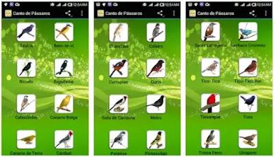 Aplikasi Masteran Burung Terbaik
