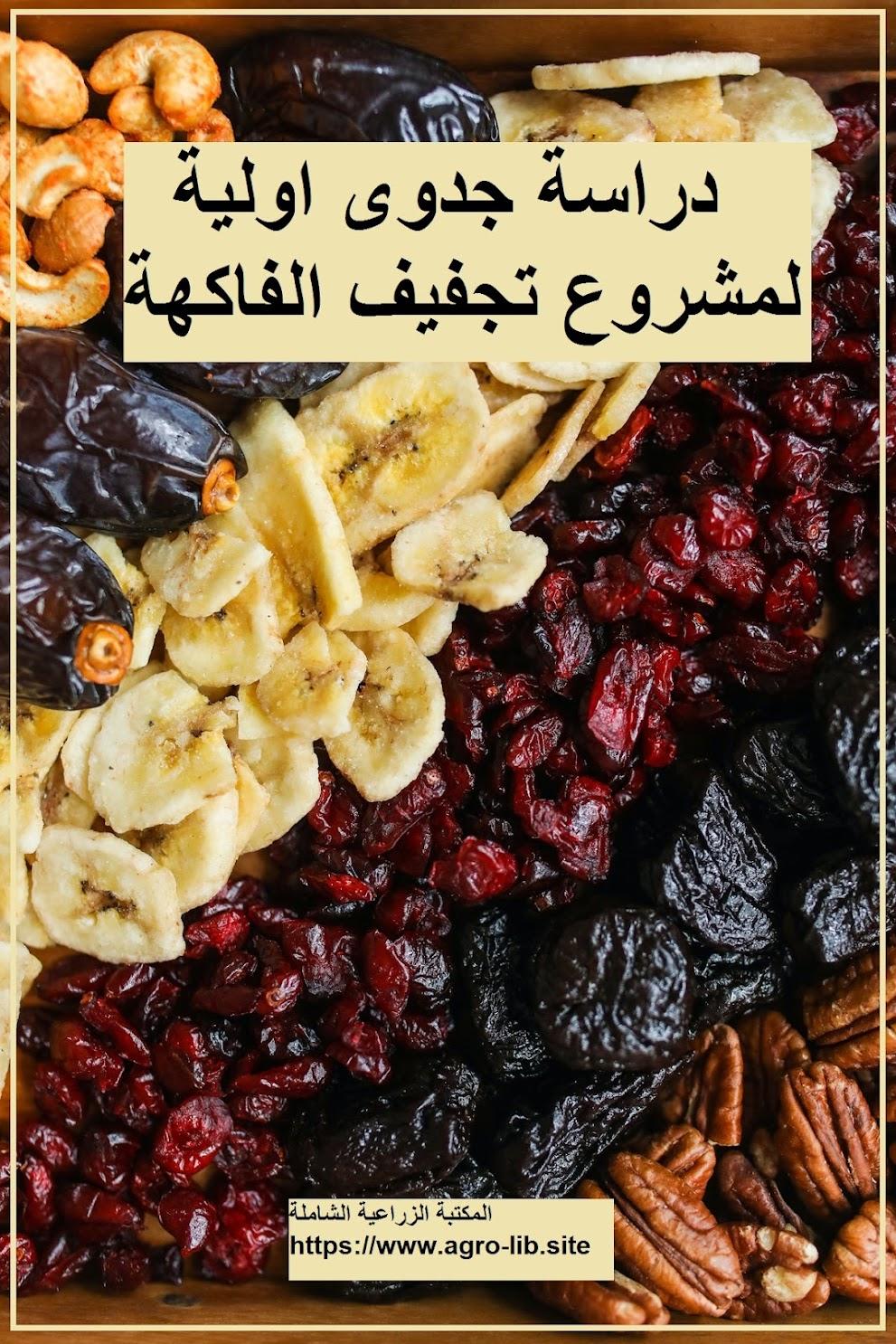 كتاب : دراسة جدوى اولية لمشروع تجفيف الفاكهة