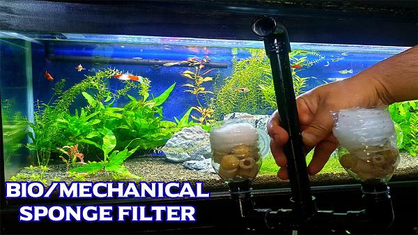 Build DIY Aquarium Filter with Double Sponge & Bio Media