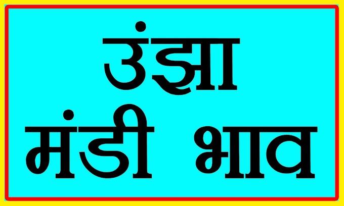 Unjha Mandi bhav