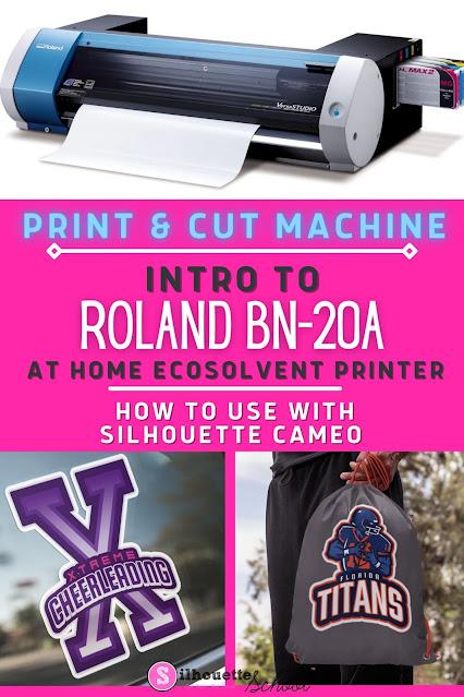 Roland BN20A print and cut vinyl machine