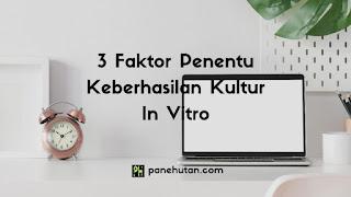 3 Faktor Penentu Keberhasilan Kultur In Vitro