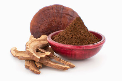 Mushroom supplement supplier in Solapur