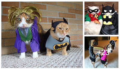 Disfraces para perros y gatos