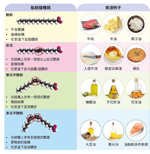 各種脂肪種類
