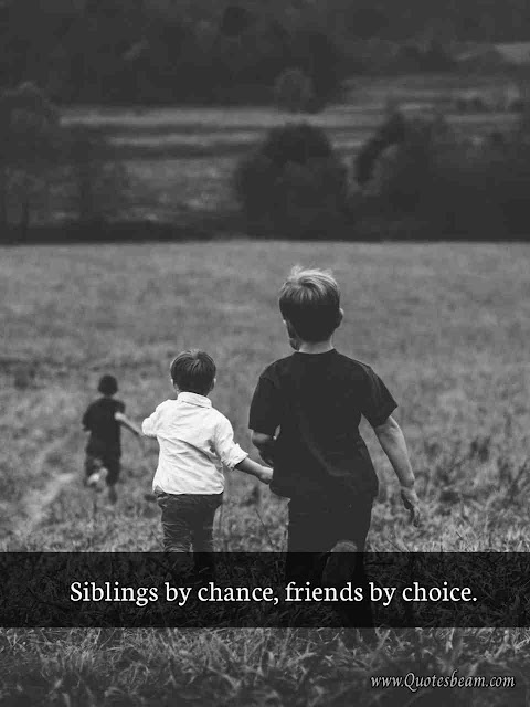 Brother  Sister Funny Quotes