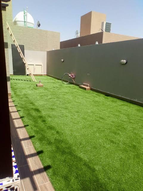 شركة تركيب عشب طبيعى بمسقط
