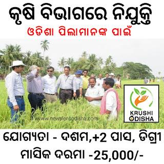 Agriculture Department Recruitment 2021, Jobs In Odisha - News Lens Odisha