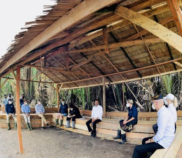Tanam Mangrove Bersama Jokowi, Ini Kesan Para Duta Besar