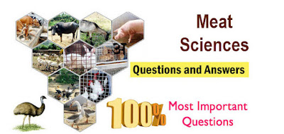 Meat Science Question and answers