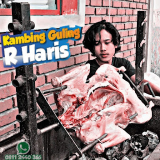 Supplier Kambing Guling Lembang Bandung, kambing guling lembang bandung, kambing guling lembang, kambing guling bandung, kambing guling,
