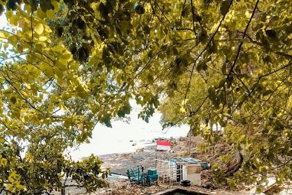 Wisata Pantai Kucur Puger Jember, Kolam Renang di Tepi Pantai