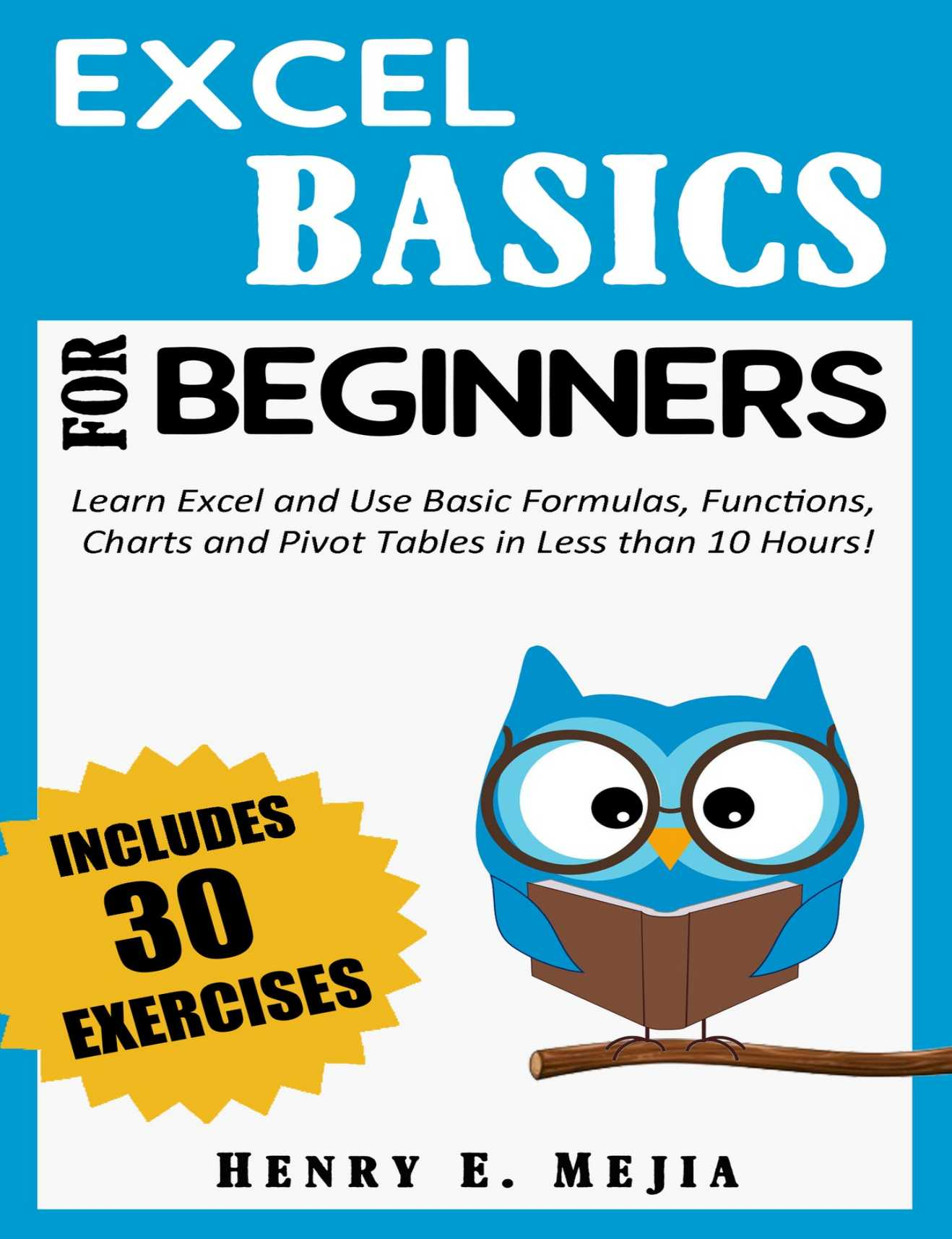 EXCEL BASICS FOR BEGINNERS: Learn Excel and Use Basic Formulas, Functions, Charts and Pivot Tables in Less Than 10 Hours!