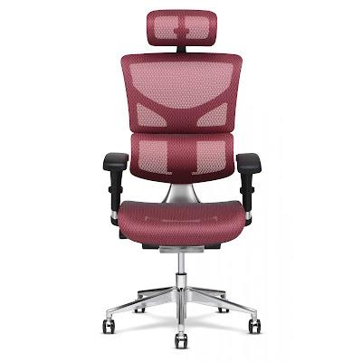 x2 chair