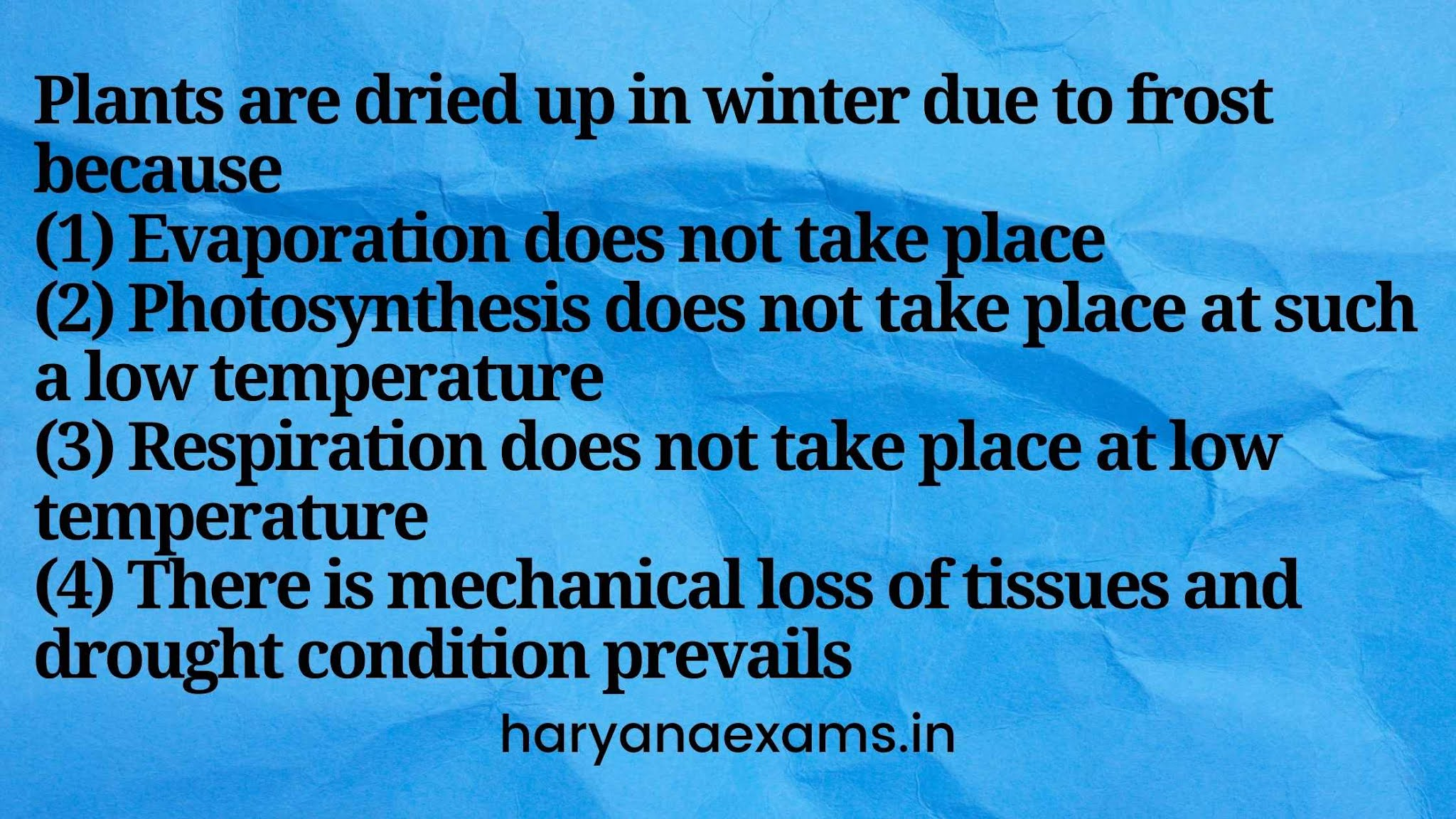 Plants are dried up in winter due to frost because   (1) Evaporation does not take place   (2) Photosynthesis does not take place at such a low temperature   (3) Respiration does not take place at low temperature   (4) There is mechanical loss of tissues and drought condition prevails