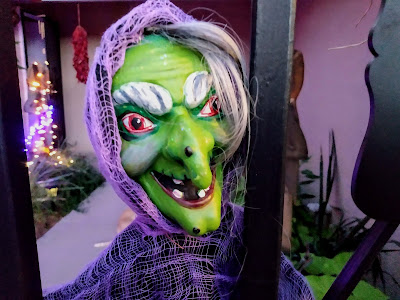 funny green witch with gray hair on fence