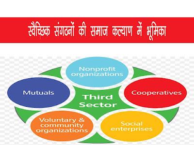 स्वैच्छिक संगठनों की समस्यायें या कमियाँ   Drawbacks of Voluntary Organisations