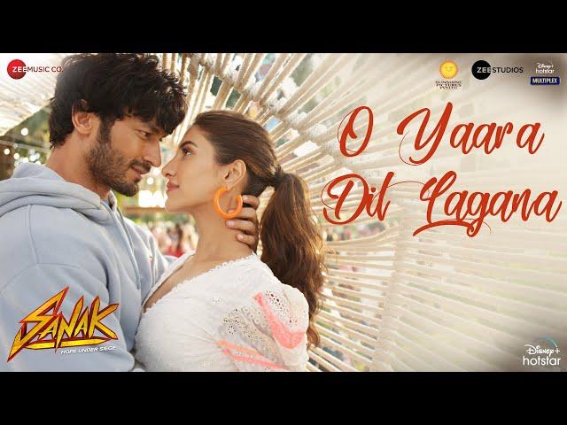 O Yaara Dil Lagana Lyrics - Vidyut, Rukmini   Stebin Ben