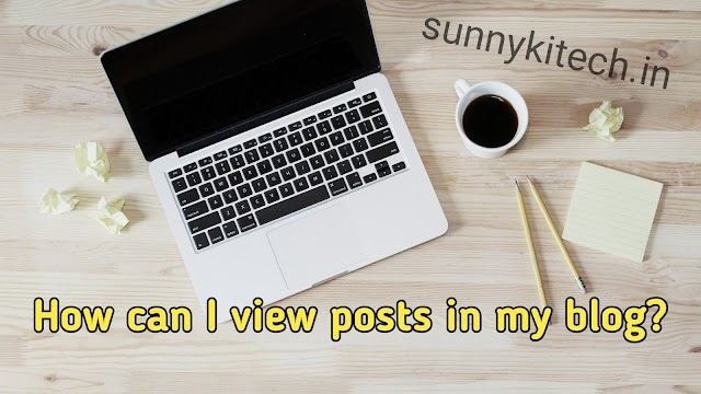How can I view posts in my blog?