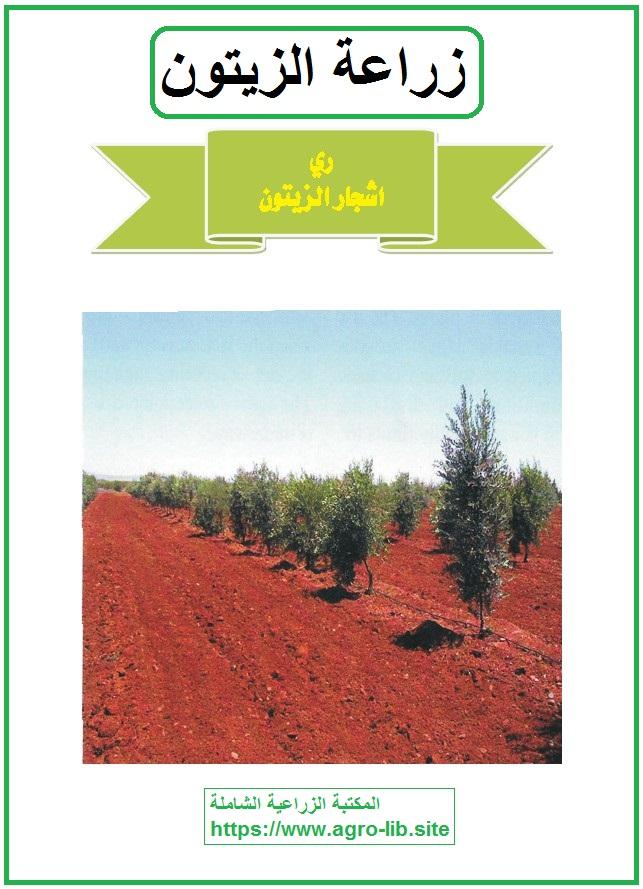كتاب : زراعة الزيتون - ري أشجار الزيتون -
