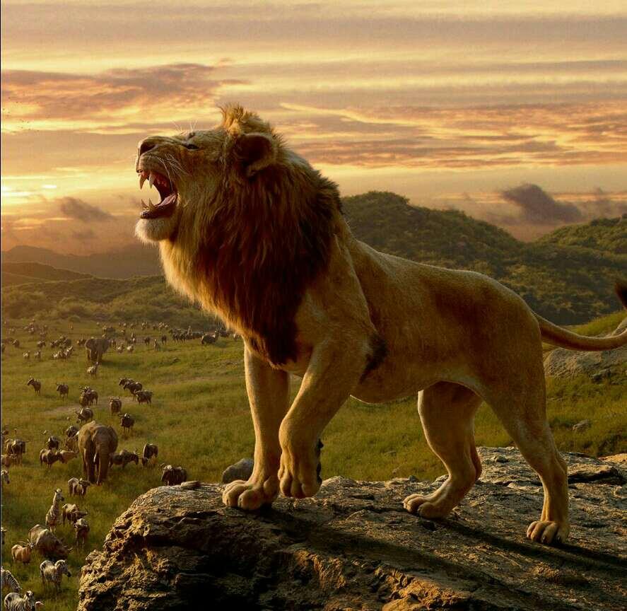 singa raja hutan