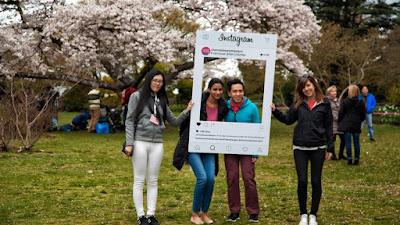 instagram, follower, instagram marketing, digital marketing,