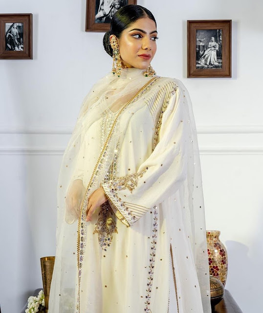 Best Punjabi Suit Design Pics