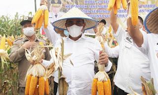 Hari Tani Nasional,  Edy Rahmayadi Jagung Potensi Besar Meningkatkan Perekonomian Sumut dan Petani