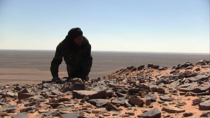 La guerra del Sáhara Occidental ha dejado hasta el momento 12 víctimas mortales y más de 4.500 desplazados.