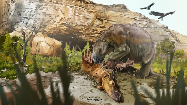 Extinct ground sloth likely ate meat with its veggies