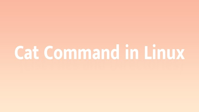 Cat Command in Linux