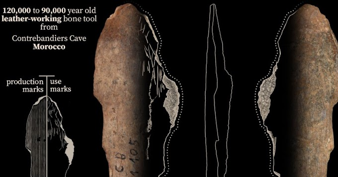 Study Suggests Earliest Use Of Bone Tools To Produce Clothing In Morocco 120,000 Years Ago