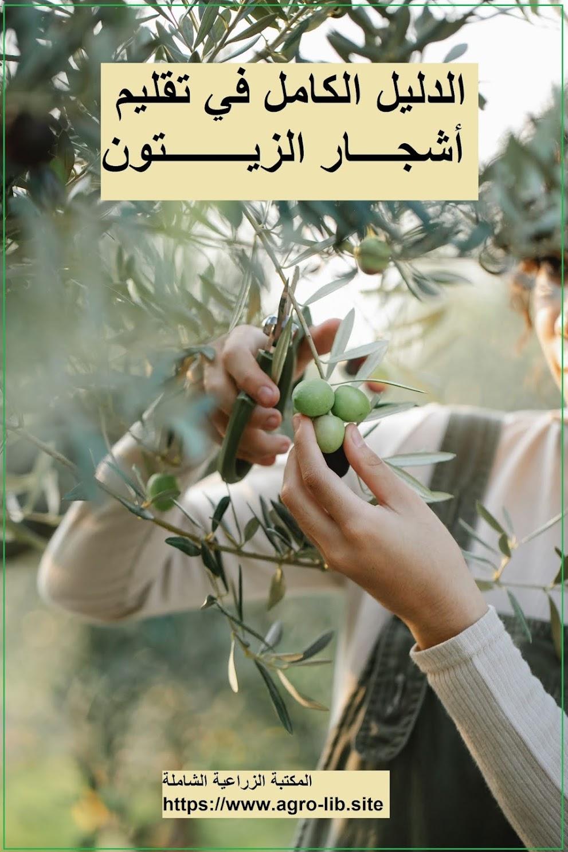 كتاب : الدليل الكامل في تقليم أشجار الزيتون