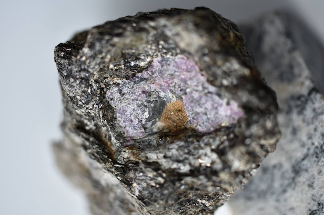 Some of the world's oldest rubies linked to early life