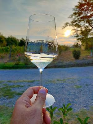 calice foto gavi vino