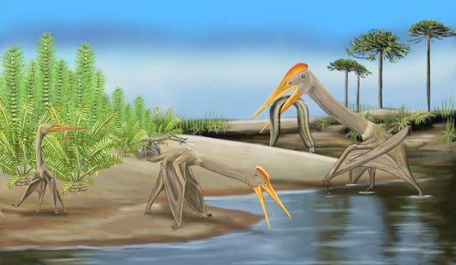 Tiny pterosaurs dominated Cretaceous skies