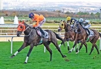 22 Ekim İstanbul At Yarışı Galopları
