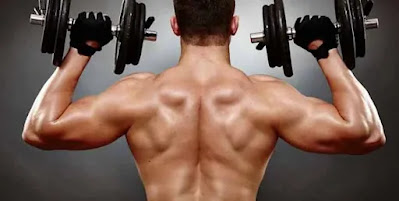 shoulders training