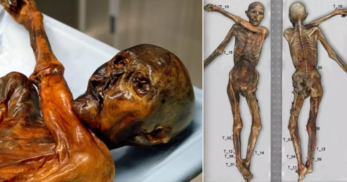 Scientists Map 61 Tattoos On 5,300-Year-Old Body Found Preserved In The Italian Alps