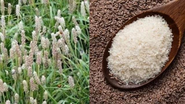पेट के लिए रामबाण हैं ये छोटे-छोटे बीज और इसके छिलके, जानिए इसके और फायदे