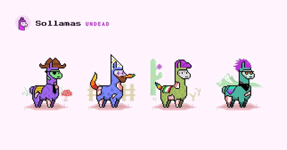 Solana Sollamas projesine ait görseller