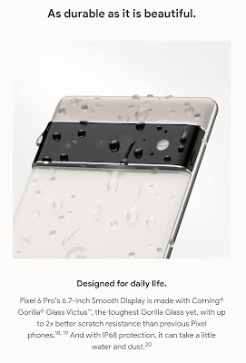 Pixel 6 is also protected by the gorilla glass vic