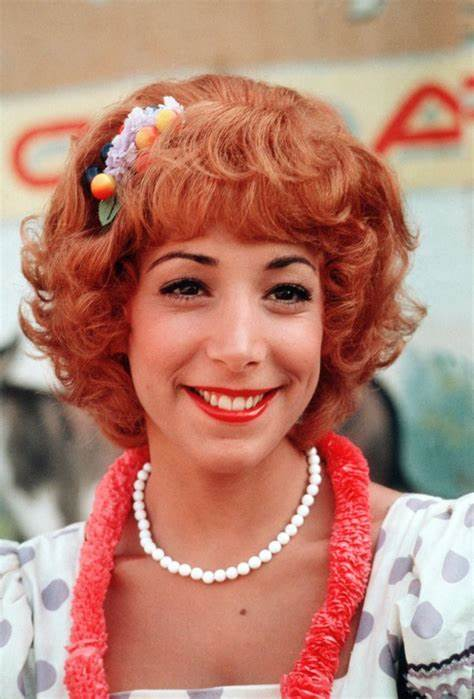Didi Conn Net Worth, Income, Salary, Earnings, Biography, How much money make?