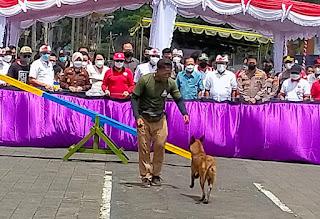 Kontes Anjing Digelar Polantas Polsek Bangli Rekayasa Arus Lalin