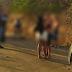 Imagens fortes: integrantes de facção são mortos por rivais após confundirem festa (Vídeo)
